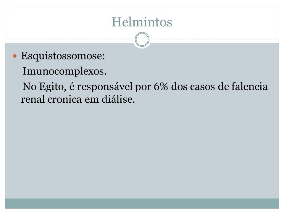 Helmintos Esquistossomose: Imunocomplexos. No Egito, é responsável por 6% dos casos de falencia renal cronica em diálise.