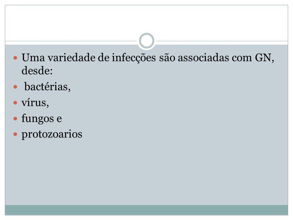 Uma variedade de infecções são associadas com GN, desde: bactérias, vírus, fungos e protozoarios