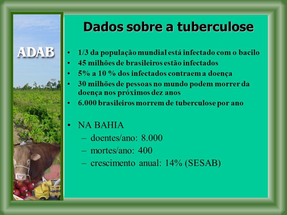 1/3 da população mundial está infectado com o bacilo 45 milhões de brasileiros estão infectados 5% a 10 % dos infectados contraem a doença 30 milhões de pessoas no mundo podem morrer da doença nos próximos dez anos 6.000 brasileiros morrem de tuberculose por ano NA BAHIA –doentes/ano: 8.000 –mortes/ano: 400 –crescimento anual: 14% (SESAB) Dados sobre a tuberculose
