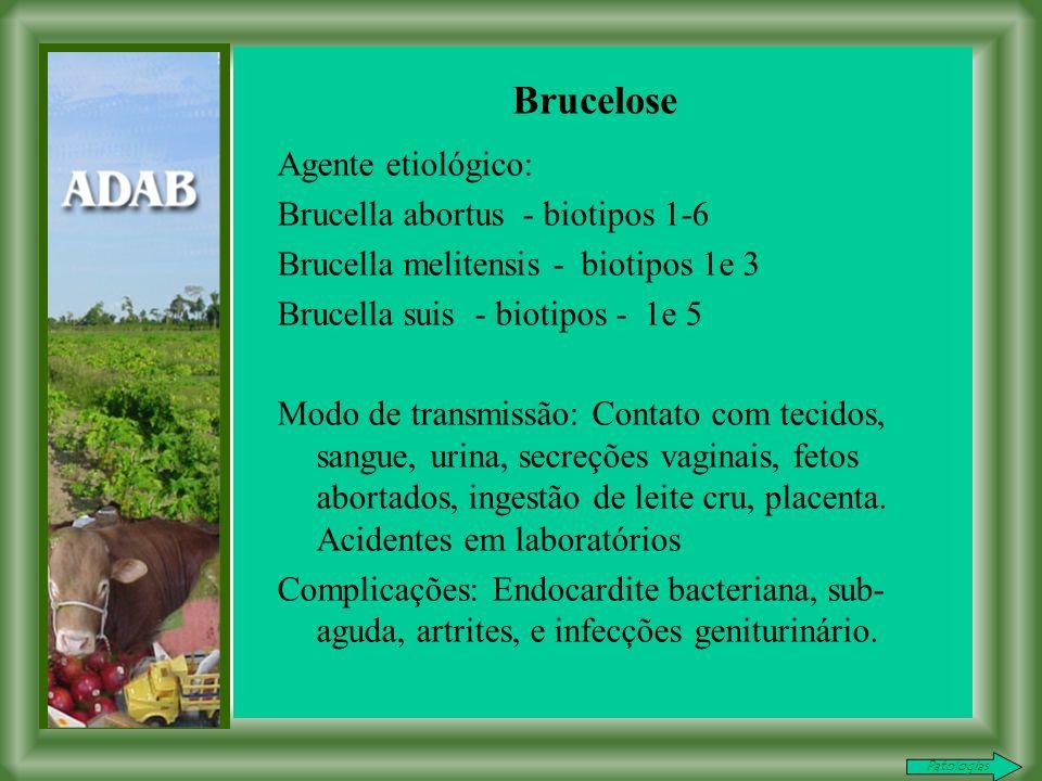 Agente etiológico: Brucella abortus - biotipos 1-6 Brucella melitensis - biotipos 1e 3 Brucella suis - biotipos - 1e 5 Modo de transmissão: Contato com tecidos, sangue, urina, secreções vaginais, fetos abortados, ingestão de leite cru, placenta.