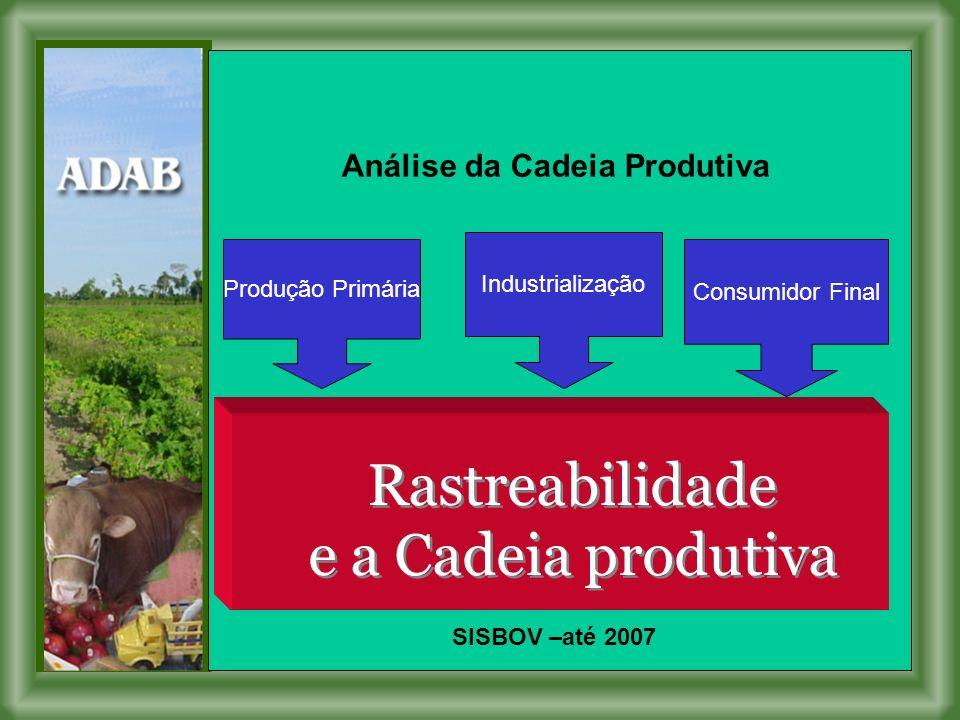 Rastreabilidade e a Cadeia produtiva Rastreabilidade e a Cadeia produtiva Produção Primária Industrialização Consumidor Final Análise da Cadeia Produtiva SISBOV –até 2007