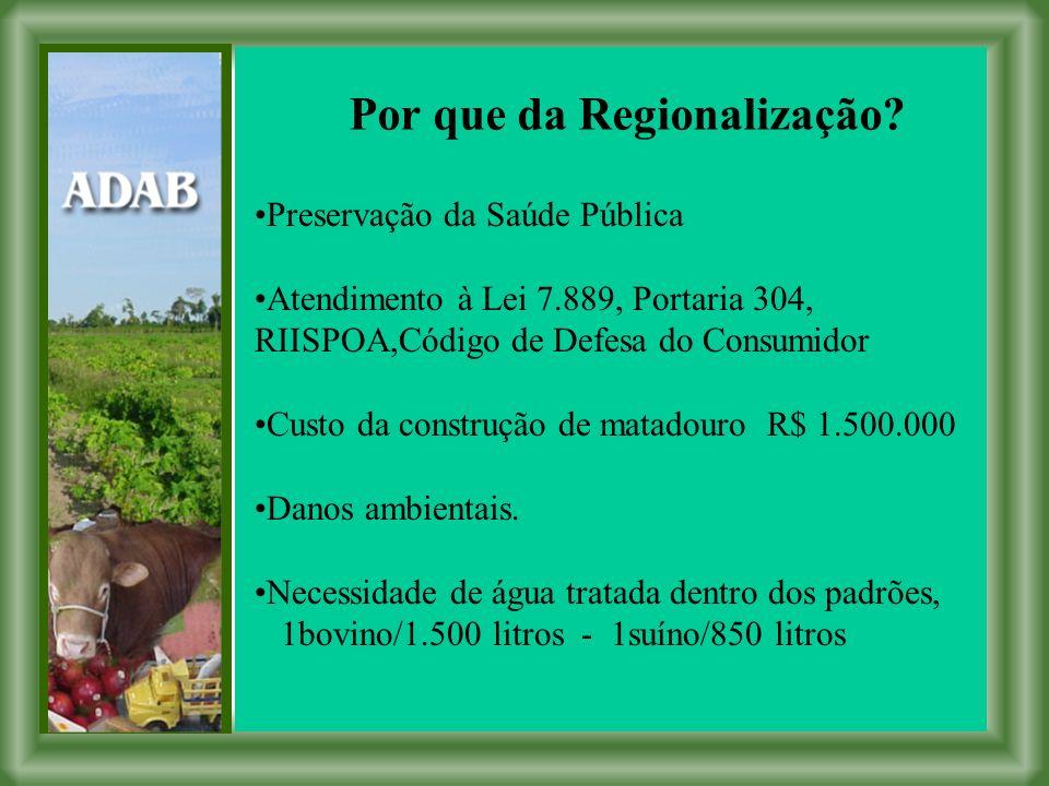Por que da Regionalização.