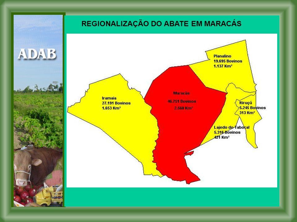 REGIONALIZAÇÃO DO ABATE EM MARACÁS