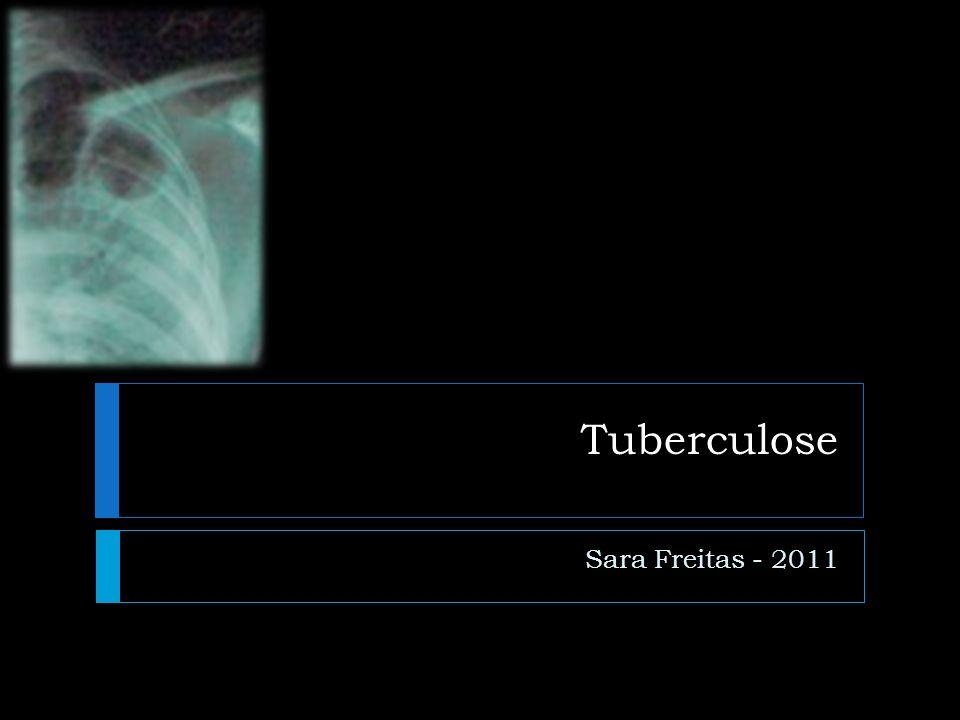Tuberculose Sara Freitas - 2011