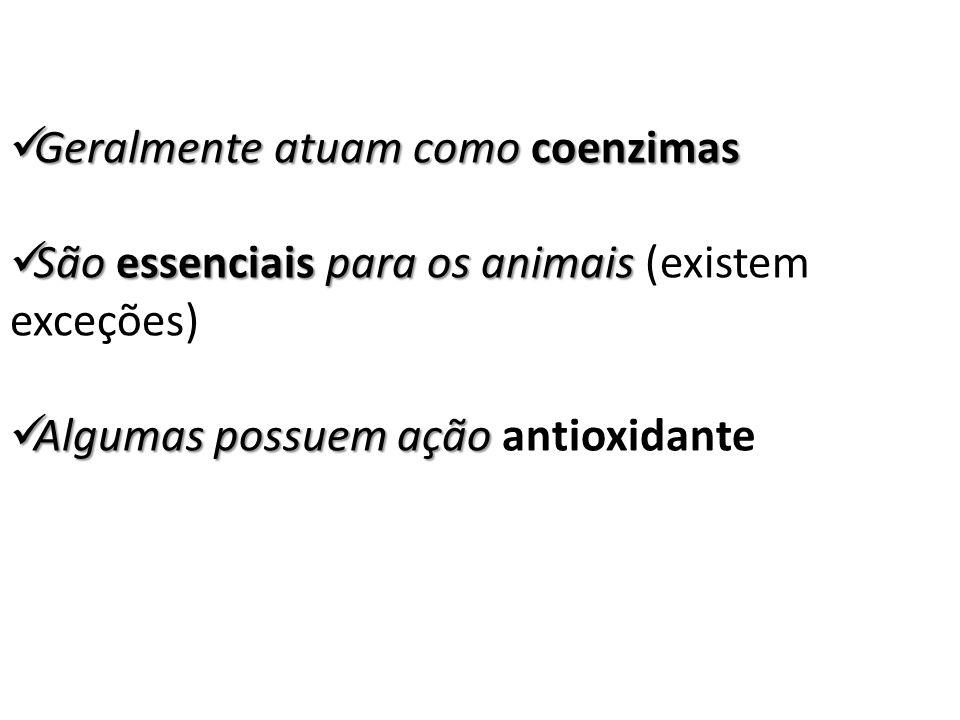 Geralmente atuam como coenzimas Geralmente atuam como coenzimas São essenciais para os animais São essenciais para os animais (existem exceções) Algum