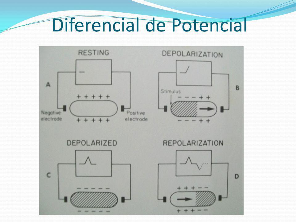 Diferencial de Potencial