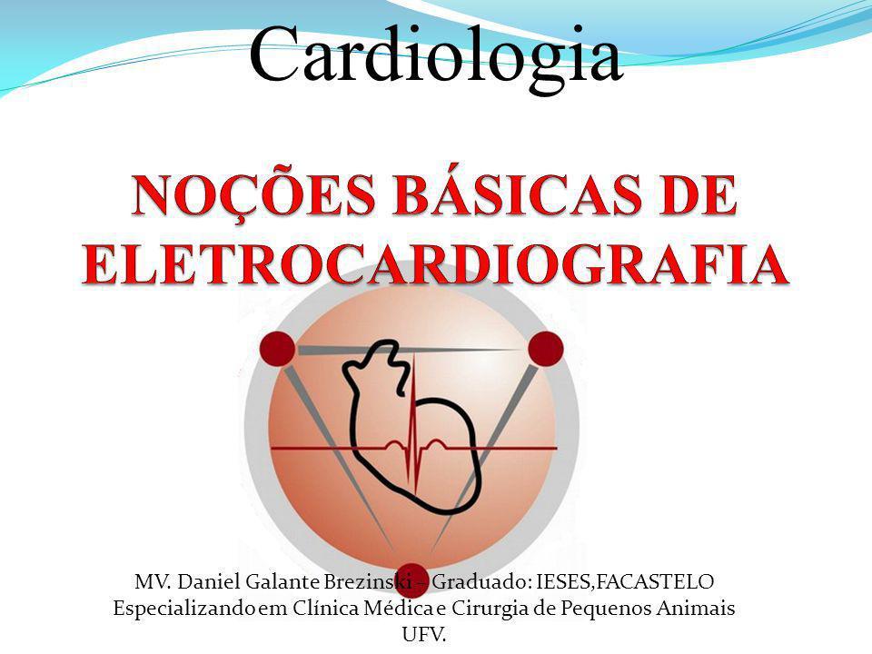 MV. Daniel Galante Brezinski – Graduado: IESES,FACASTELO Especializando em Clínica Médica e Cirurgia de Pequenos Animais UFV. Cardiologia