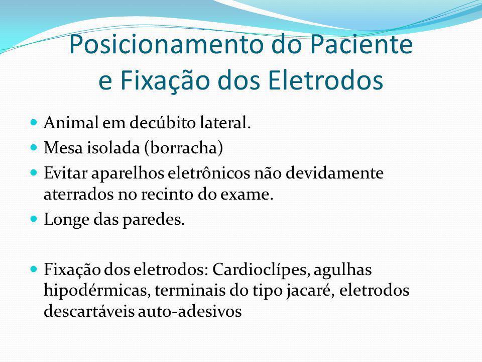 Posicionamento do Paciente e Fixação dos Eletrodos Animal em decúbito lateral. Mesa isolada (borracha) Evitar aparelhos eletrônicos não devidamente at