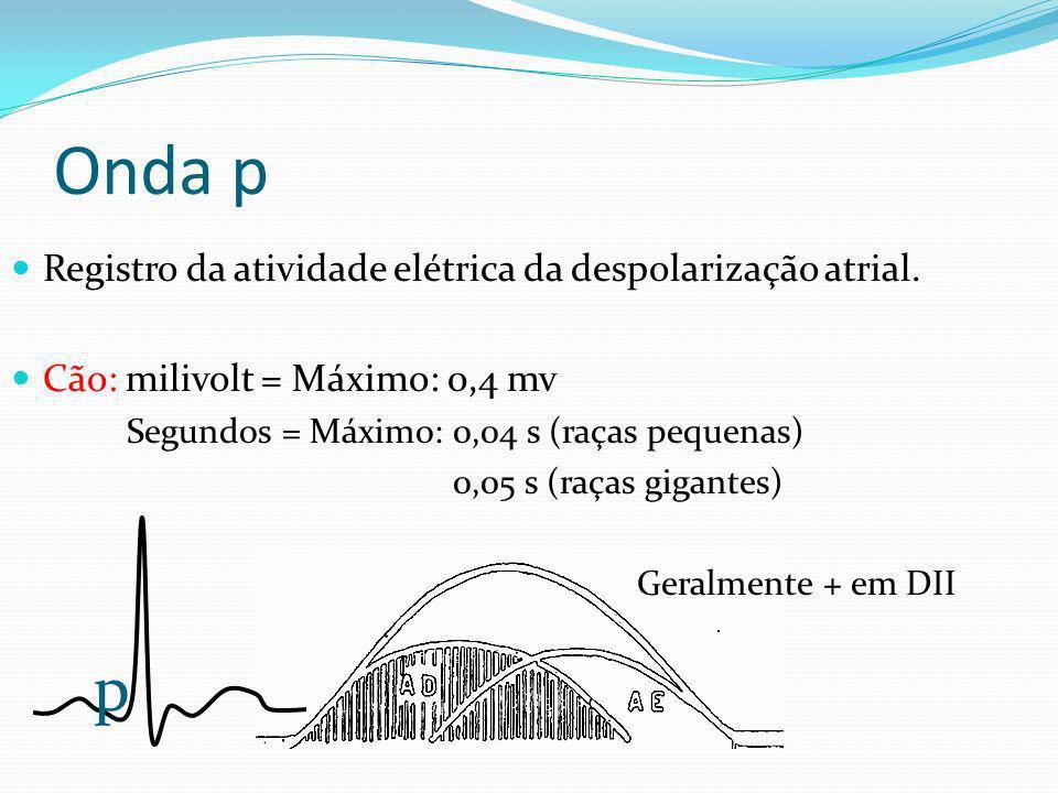 Onda p Registro da atividade elétrica da despolarização atrial. Cão: milivolt = Máximo: 0,4 mv Segundos = Máximo: 0,04 s (raças pequenas) 0,05 s (raça