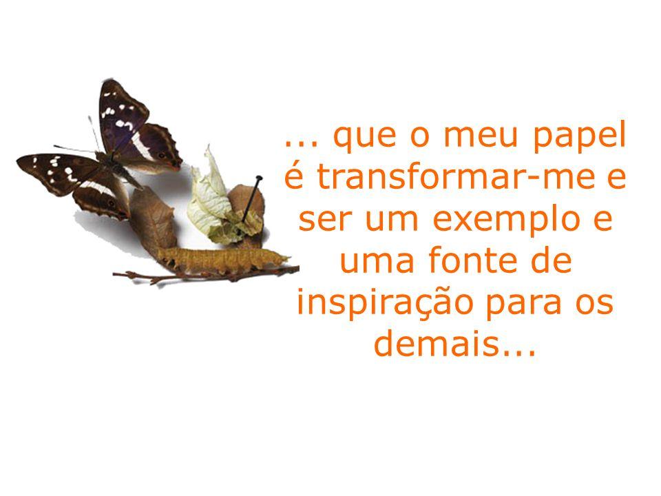 ... que o meu papel é transformar-me e ser um exemplo e uma fonte de inspiração para os demais...