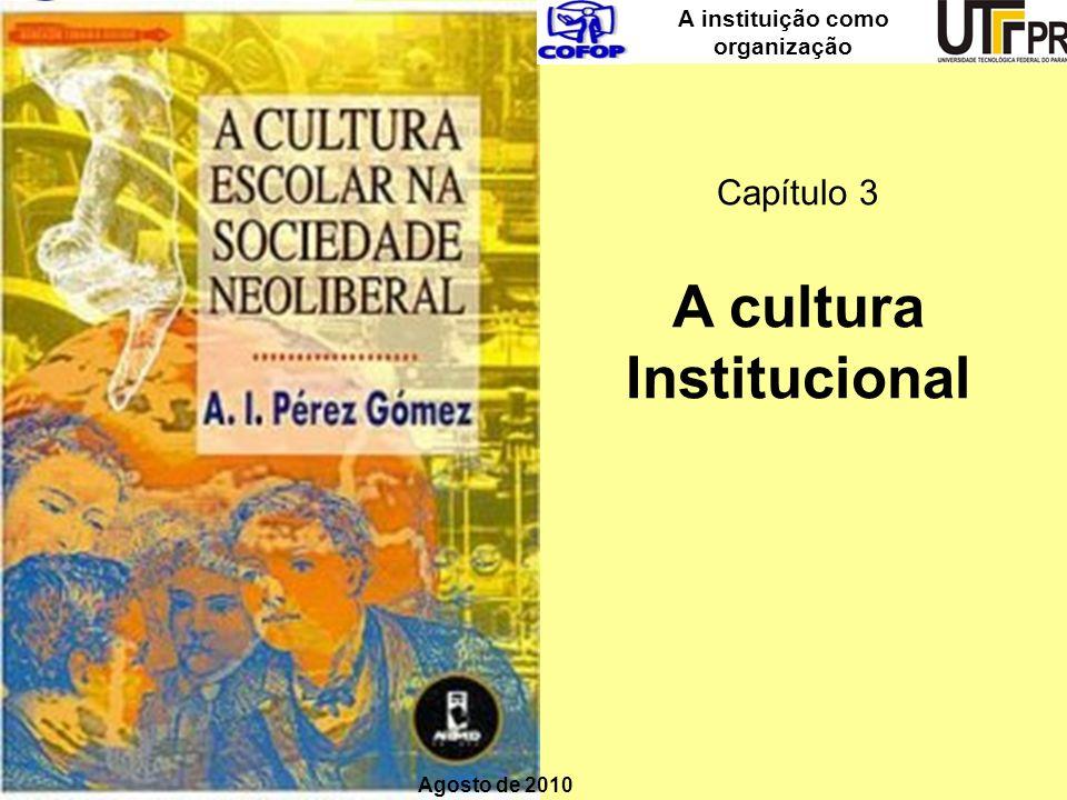 A instituição como organização Capítulo 3 A cultura Institucional Agosto de 2010