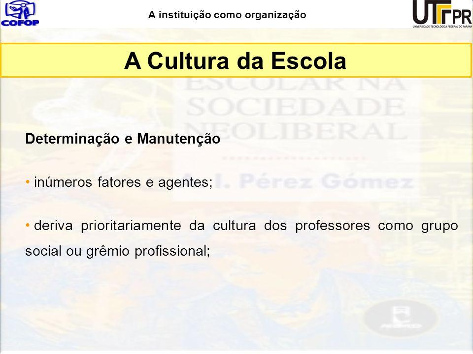 A instituição como organização Determinação e Manutenção inúmeros fatores e agentes; deriva prioritariamente da cultura dos professores como grupo soc