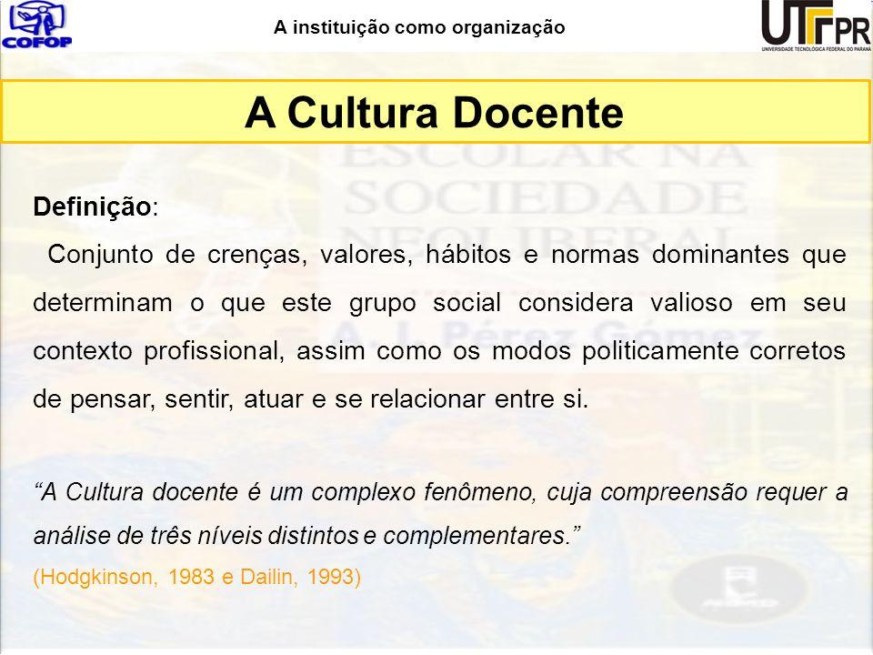 A instituição como organização Definição: Conjunto de crenças, valores, hábitos e normas dominantes que determinam o que este grupo social considera v