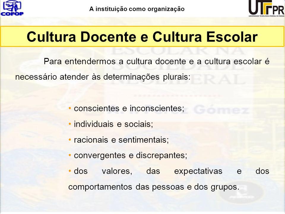A instituição como organização Cultura Docente e Cultura Escolar Para entendermos a cultura docente e a cultura escolar é necessário atender às determ