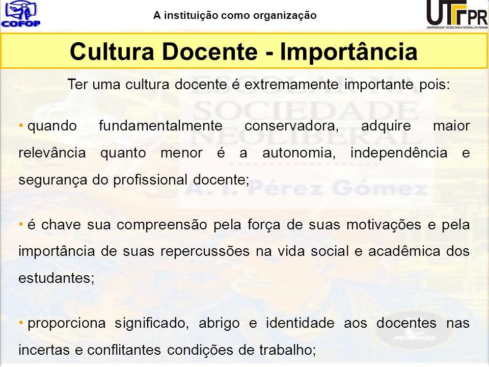 A instituição como organização Ter uma cultura docente é extremamente importante pois: quando fundamentalmente conservadora, adquire maior relevância