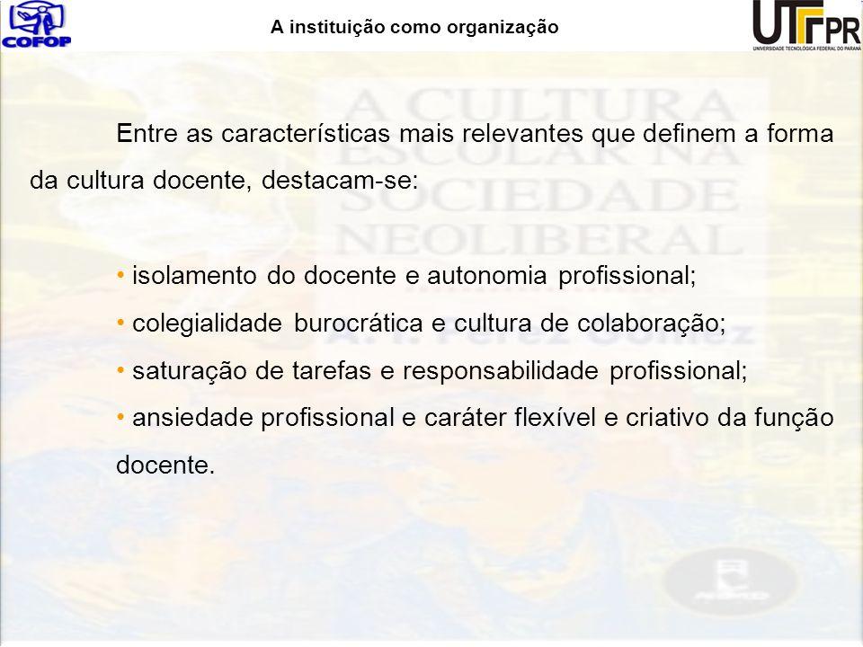 A instituição como organização Entre as características mais relevantes que definem a forma da cultura docente, destacam-se: isolamento do docente e a