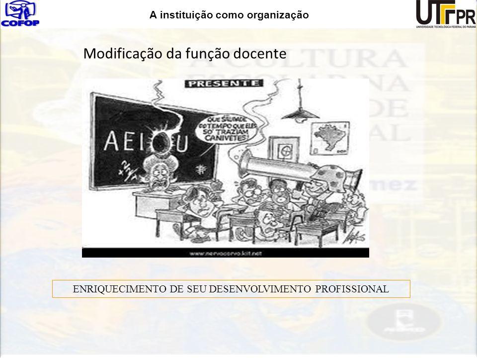 Modificação da função docente ENRIQUECIMENTO DE SEU DESENVOLVIMENTO PROFISSIONAL