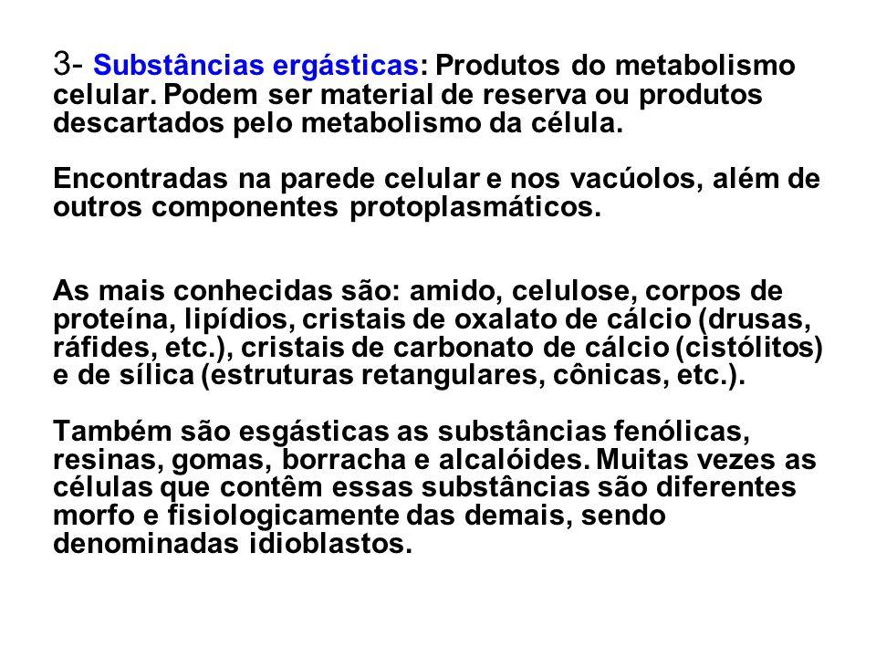 3- Substâncias ergásticas: Produtos do metabolismo celular. Podem ser material de reserva ou produtos descartados pelo metabolismo da célula. Encontra