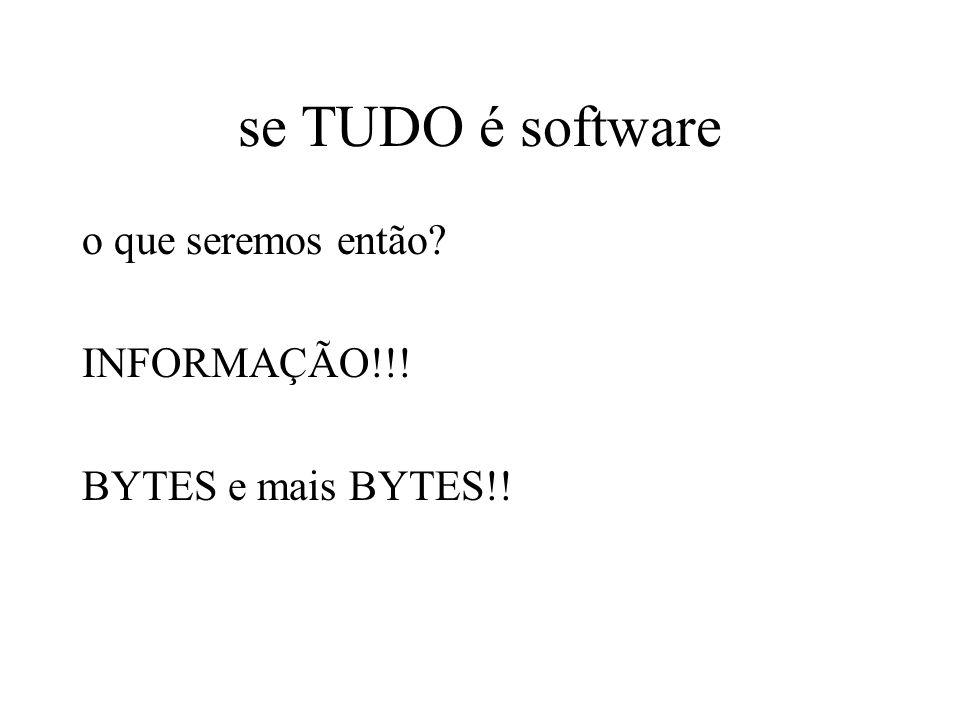 se TUDO é software o que seremos então? INFORMAÇÃO!!! BYTES e mais BYTES!!