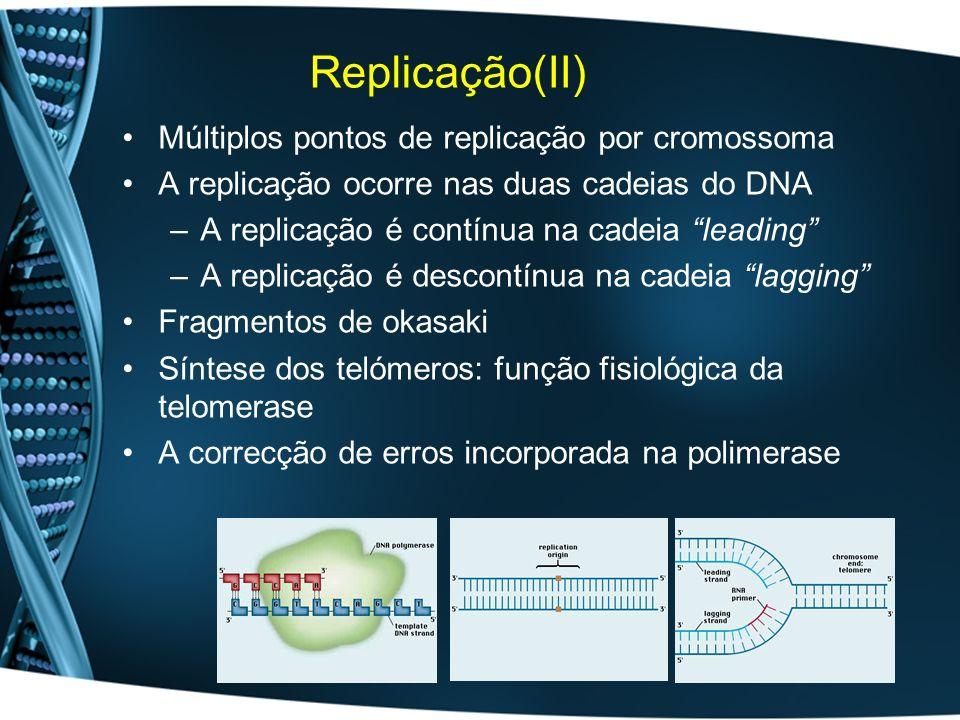 Replicação(II) Múltiplos pontos de replicação por cromossoma A replicação ocorre nas duas cadeias do DNA –A replicação é contínua na cadeia leading –A replicação é descontínua na cadeia lagging Fragmentos de okasaki Síntese dos telómeros: função fisiológica da telomerase A correcção de erros incorporada na polimerase