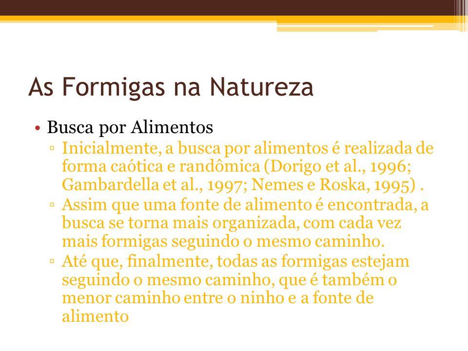 As Formigas na Natureza Busca por Alimentos Inicialmente, a busca por alimentos é realizada de forma caótica e randômica (Dorigo et al., 1996; Gambardella et al., 1997; Nemes e Roska, 1995).