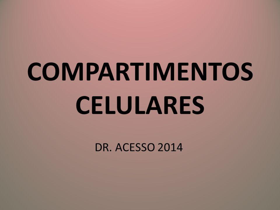 COMPARTIMENTOS CELULARES DR. ACESSO 2014