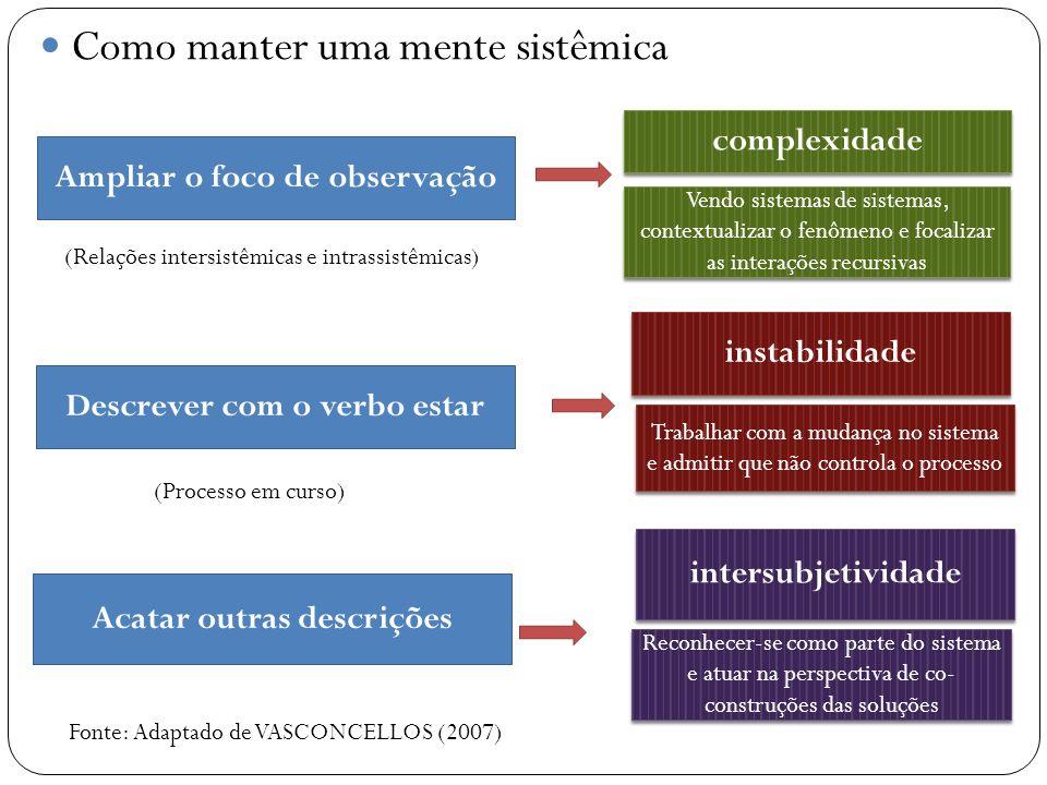Como manter uma mente sistêmica Ampliar o foco de observação complexidade Descrever com o verbo estar Acatar outras descrições instabilidade intersubj