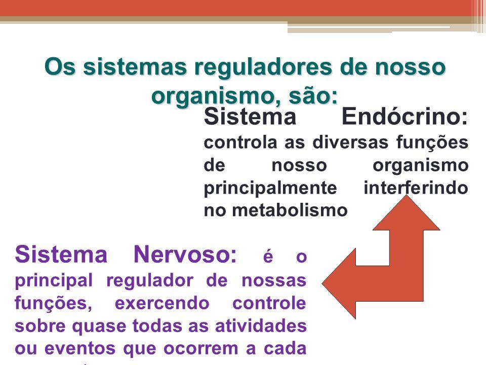 Os sistemas reguladores de nosso organismo, são: Sistema Endócrino: controla as diversas funções de nosso organismo principalmente interferindo no met