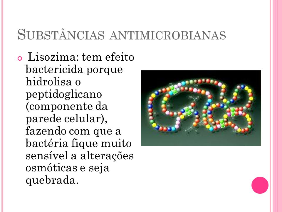 S UBSTÂNCIAS ANTIMICROBIANAS Lisozima: tem efeito bactericida porque hidrolisa o peptidoglicano (componente da parede celular), fazendo com que a bact