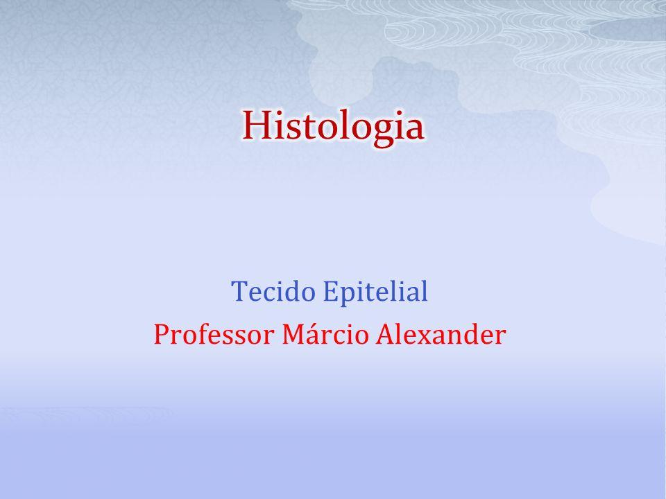 Tecido Epitelial Professor Márcio Alexander