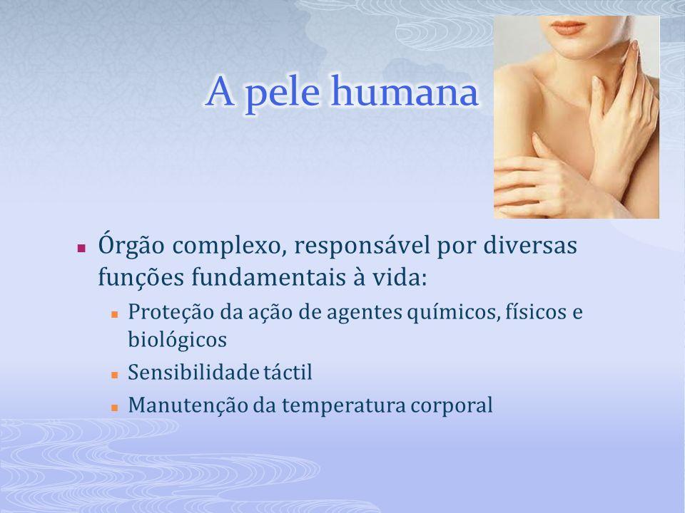 Órgão complexo, responsável por diversas funções fundamentais à vida: Proteção da ação de agentes químicos, físicos e biológicos Sensibilidade táctil Manutenção da temperatura corporal