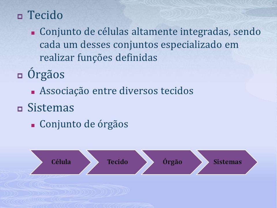 Tecido Conjunto de células altamente integradas, sendo cada um desses conjuntos especializado em realizar funções definidas Órgãos Associação entre diversos tecidos Sistemas Conjunto de órgãos CélulaTecidoÓrgãoSistemas