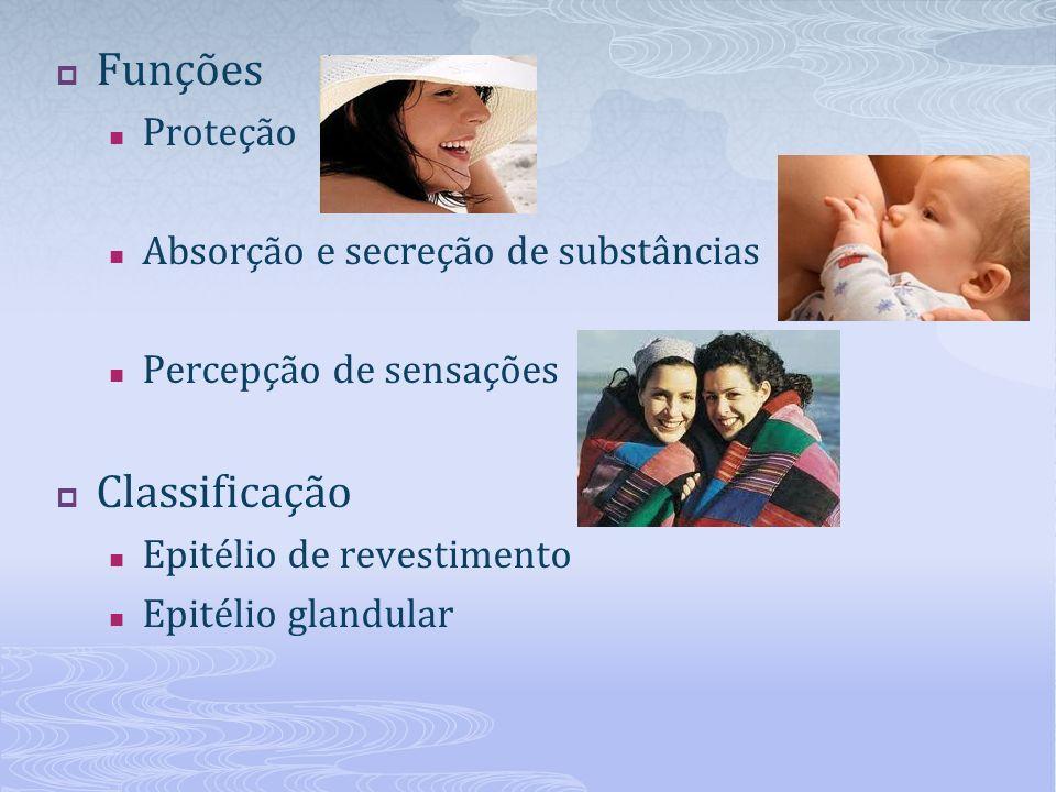Funções Proteção Absorção e secreção de substâncias Percepção de sensações Classificação Epitélio de revestimento Epitélio glandular