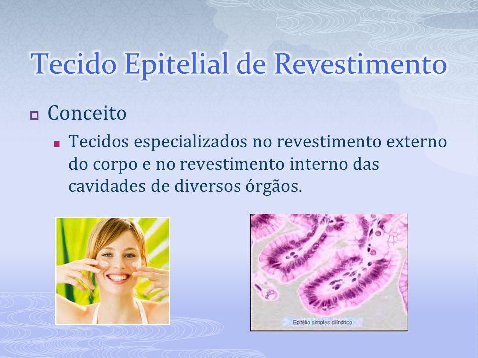 Conceito Tecidos especializados no revestimento externo do corpo e no revestimento interno das cavidades de diversos órgãos.
