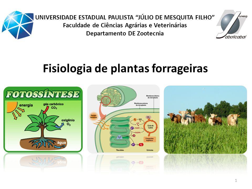 1 Fisiologia de plantas forrageiras UNIVERSIDADE ESTADUAL PAULISTA JÚLIO DE MESQUITA FILHO Faculdade de Ciências Agrárias e Veterinárias Departamento