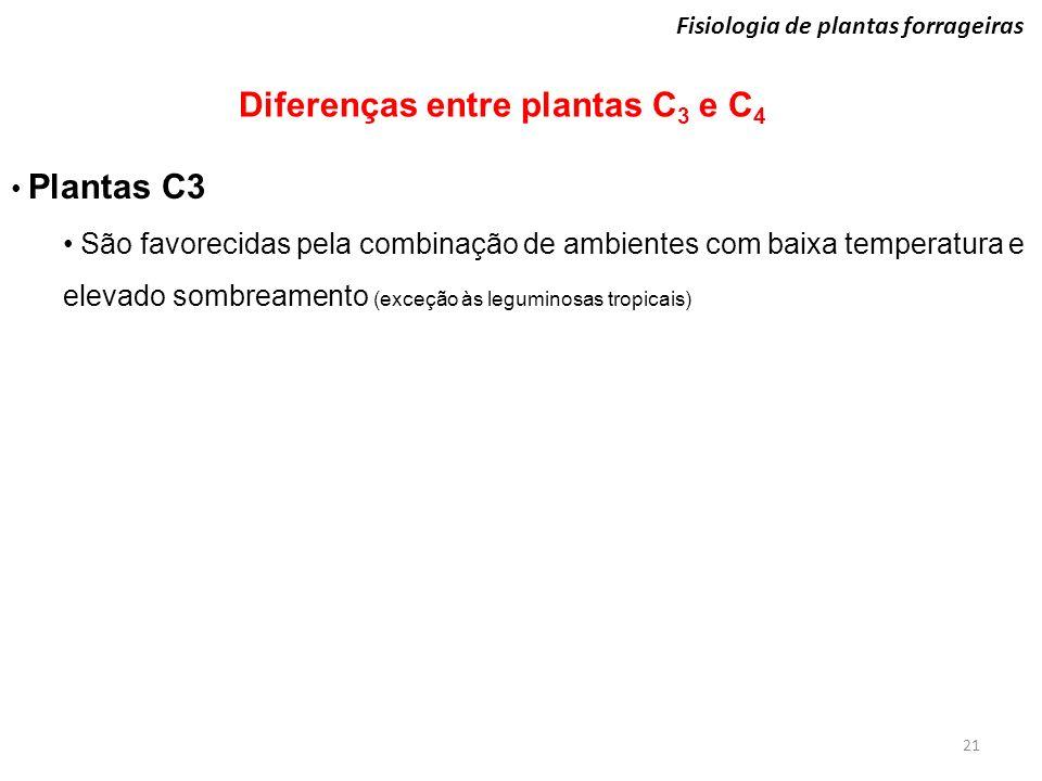 21 Fisiologia de plantas forrageiras Diferenças entre plantas C 3 e C 4 Plantas C3 São favorecidas pela combinação de ambientes com baixa temperatura