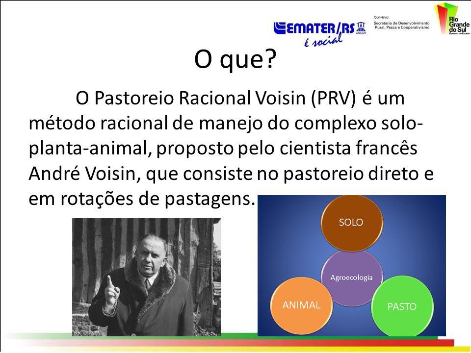 O que? O Pastoreio Racional Voisin (PRV) é um método racional de manejo do complexo solo- planta-animal, proposto pelo cientista francês André Voisin,