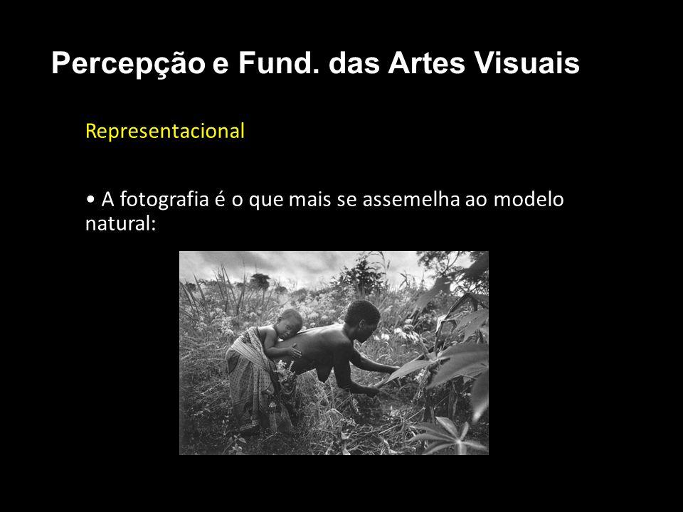 Representacional A fotografia é o que mais se assemelha ao modelo natural: Percepção e Fund. das Artes Visuais