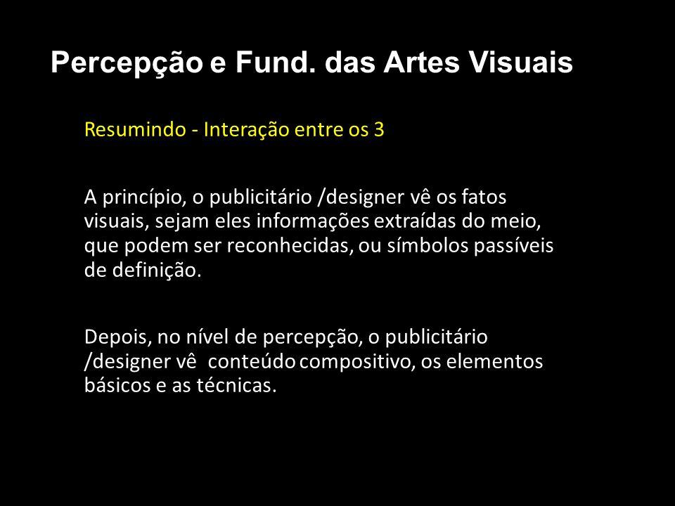 Resumindo - Interação entre os 3 A princípio, o publicitário /designer vê os fatos visuais, sejam eles informações extraídas do meio, que podem ser re