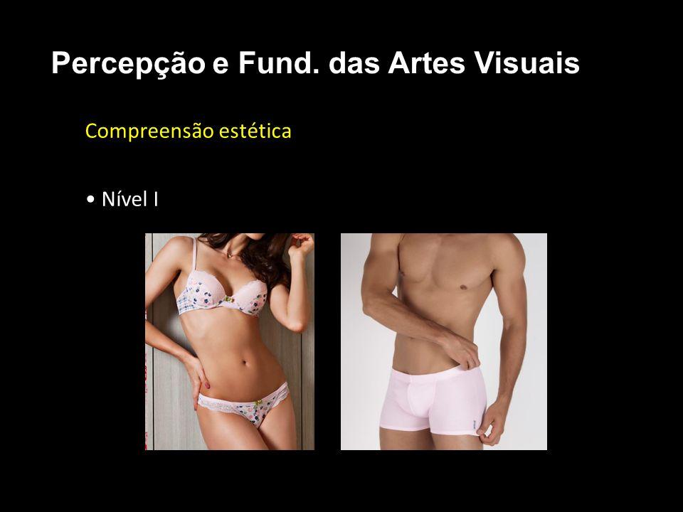 Compreensão estética Nível I Percepção e Fund. das Artes Visuais