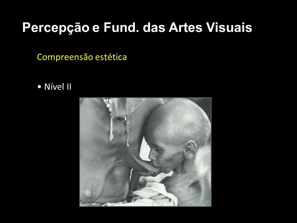Compreensão estética Nível II Percepção e Fund. das Artes Visuais