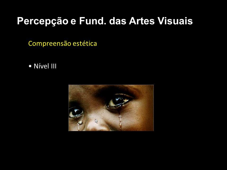 Compreensão estética Nível III Percepção e Fund. das Artes Visuais