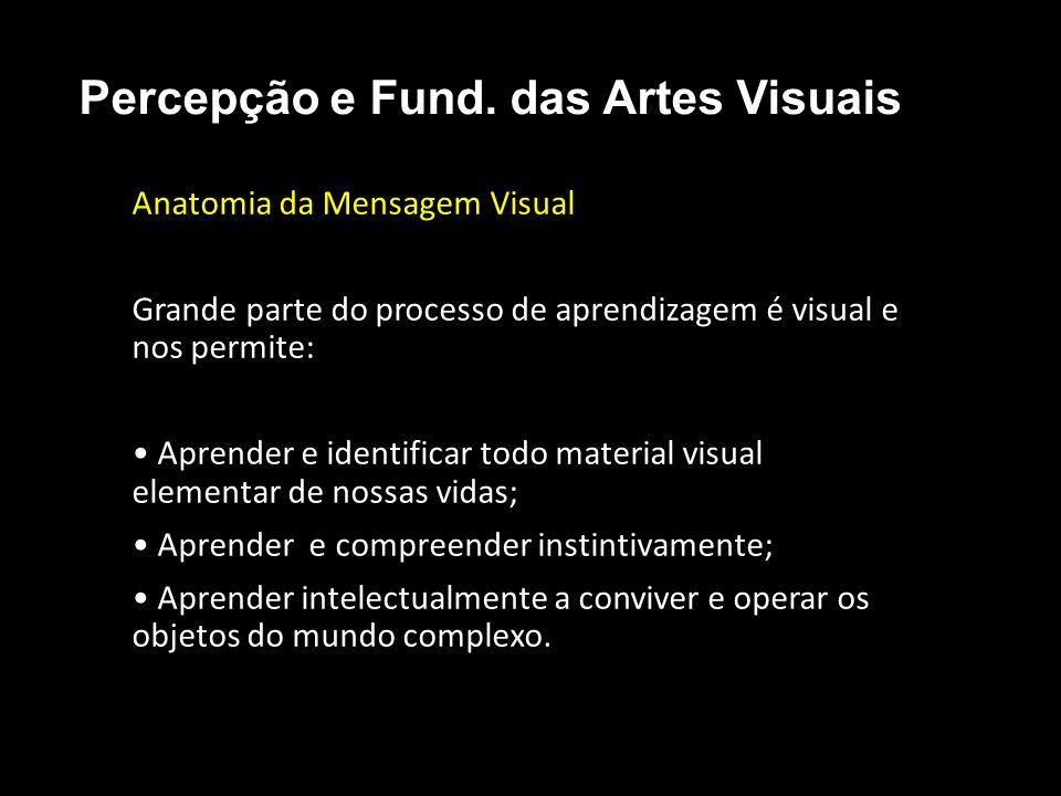Anatomia da Mensagem Visual Grande parte do processo de aprendizagem é visual e nos permite: Aprender e identificar todo material visual elementar de