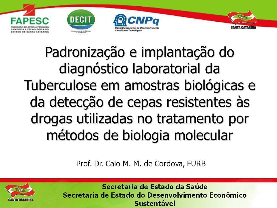 Padronização e implantação do diagnóstico laboratorial da Tuberculose em amostras biológicas e da detecção de cepas resistentes às drogas utilizadas no tratamento por métodos de biologia molecular Prof.