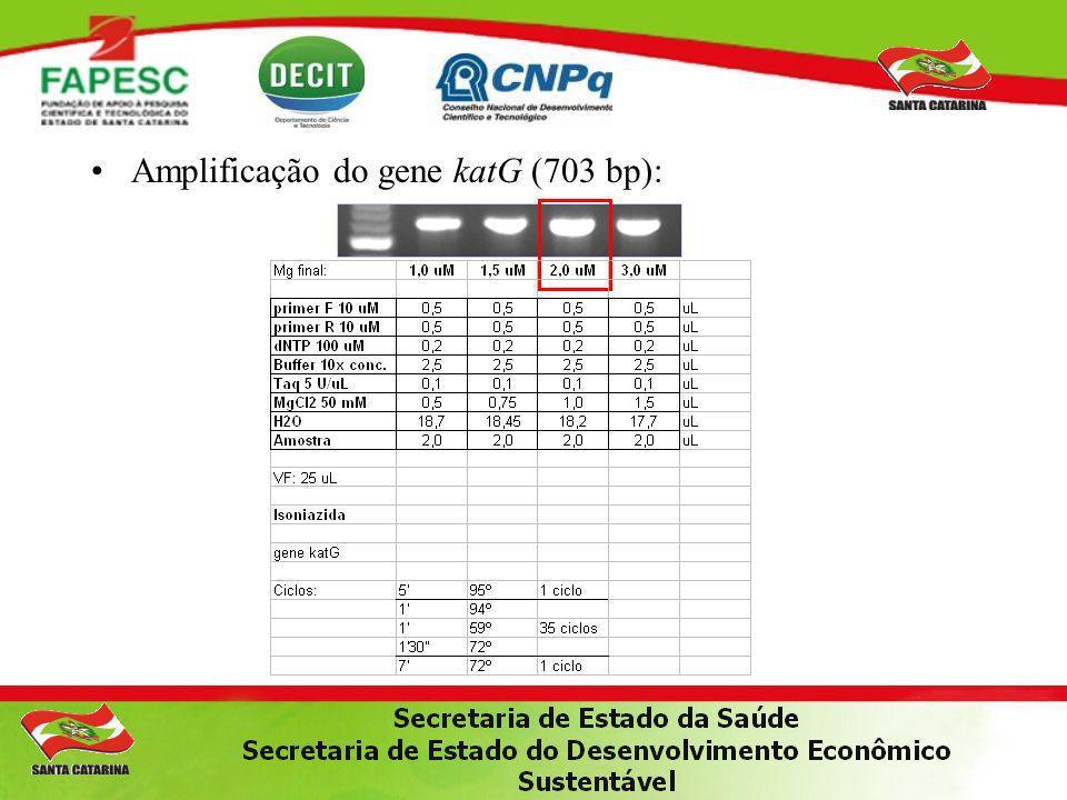 Amplificação do gene katG (703 bp):