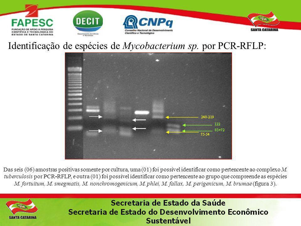 Identificação de espécies de Mycobacterium sp. por PCR-RFLP: Das seis (06) amostras positivas somente por cultura, uma (01) foi possível identificar c
