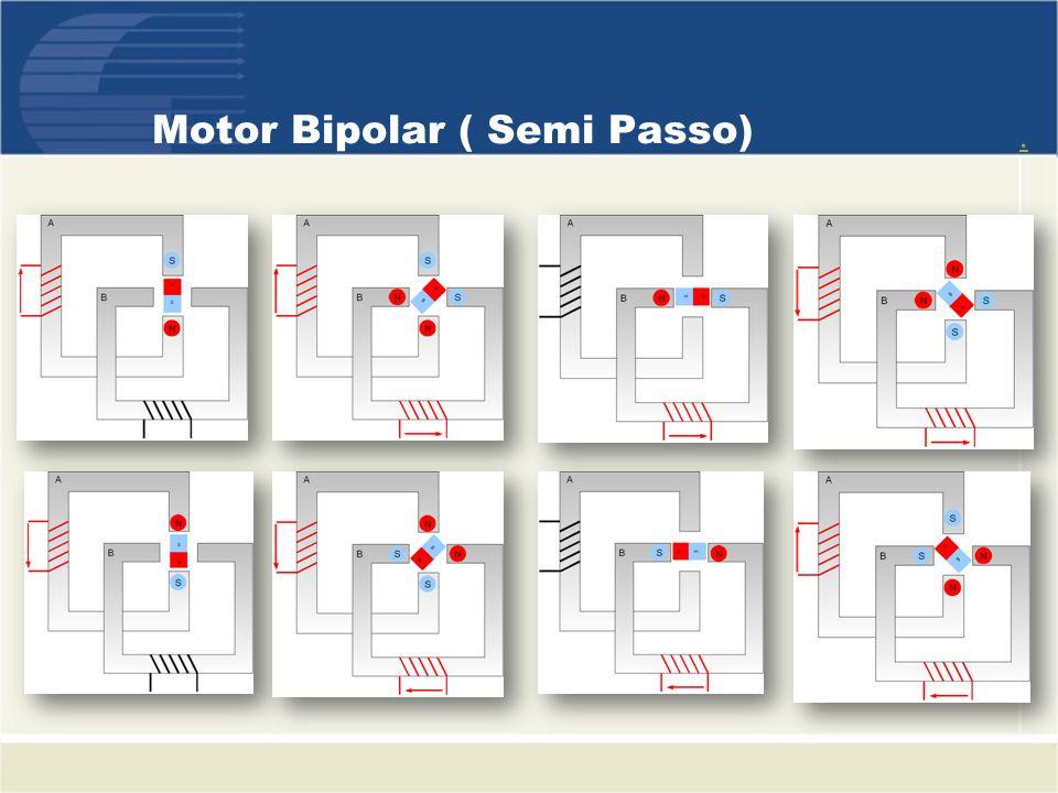Motor Bipolar ( Semi Passo).