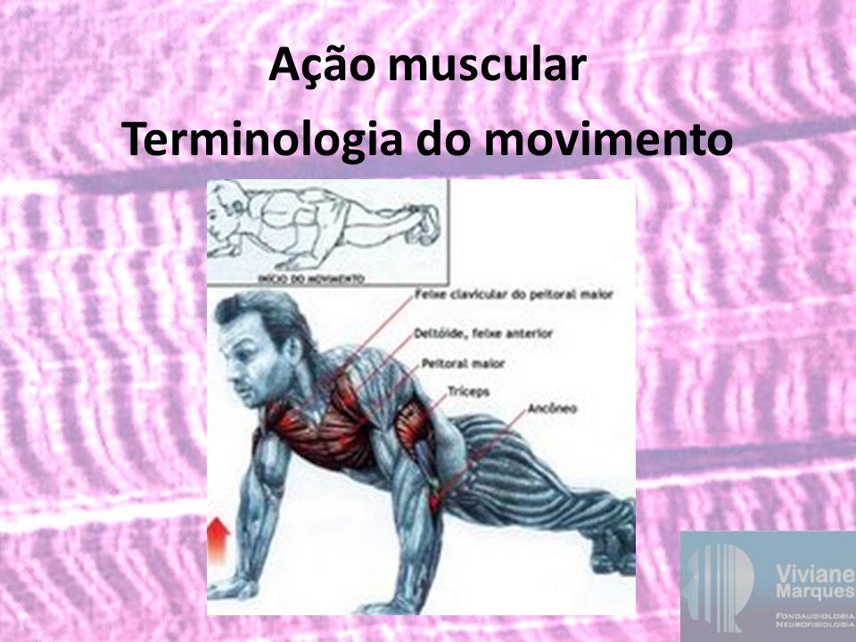Ação muscular Terminologia do movimento
