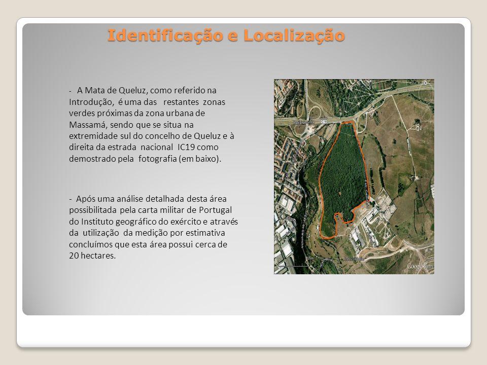 Identificação e Localização - A Mata de Queluz, como referido na Introdução, é uma das restantes zonas verdes próximas da zona urbana de Massamá, send