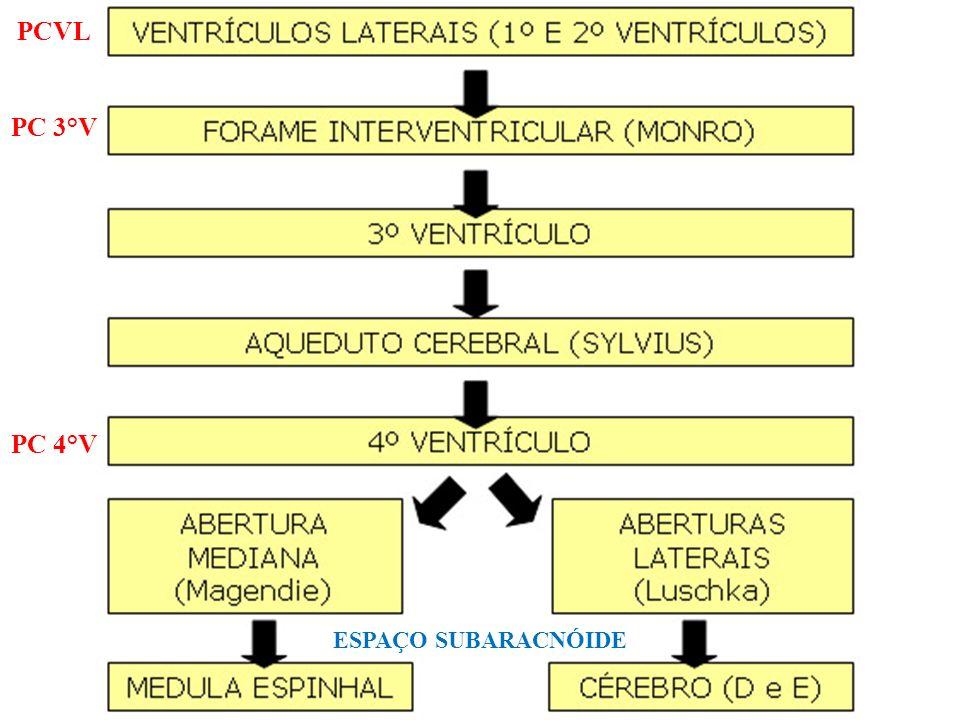 PCVL PC 3°V PC 4°V ESPAÇO SUBARACNÓIDE